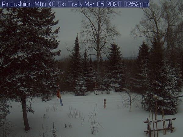 Pincushion Mountain trail cam