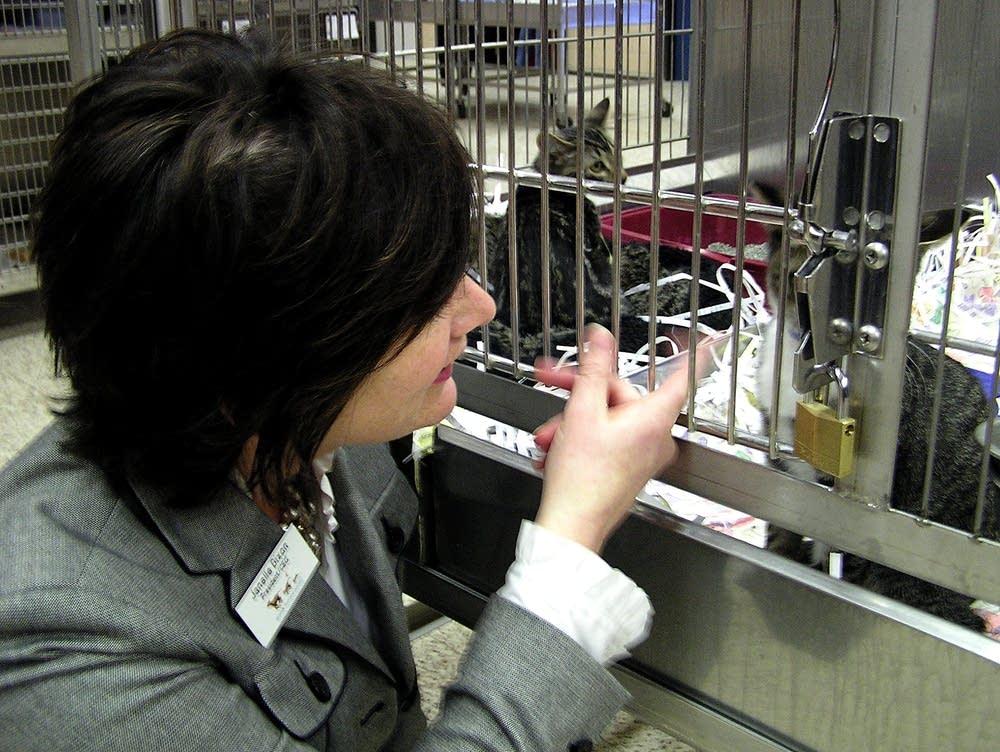 Animal Humane Society president Janelle Dixon