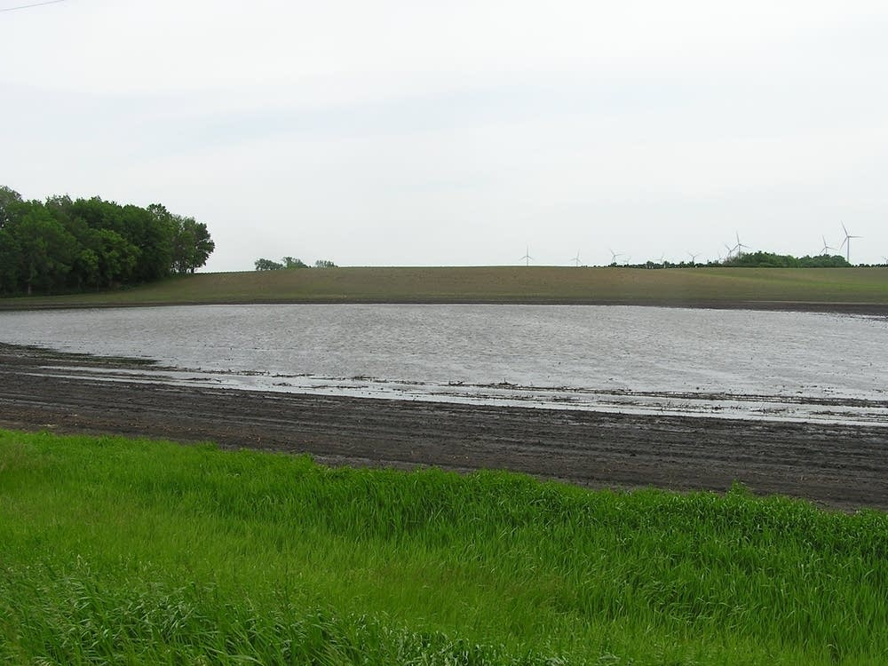 Farmland ponds