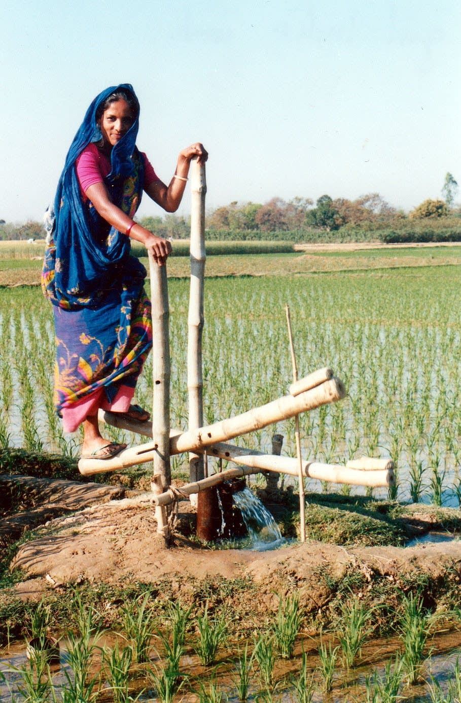 Indian woman on a treadle pump