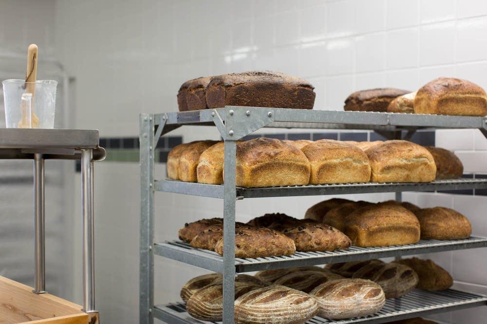 Bread Star Rising