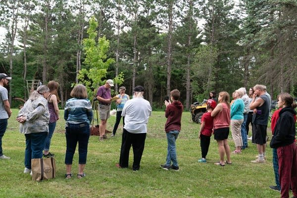 People bowing their heads while standing around a newly planted tree.