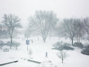 Snowstorm hits Winona