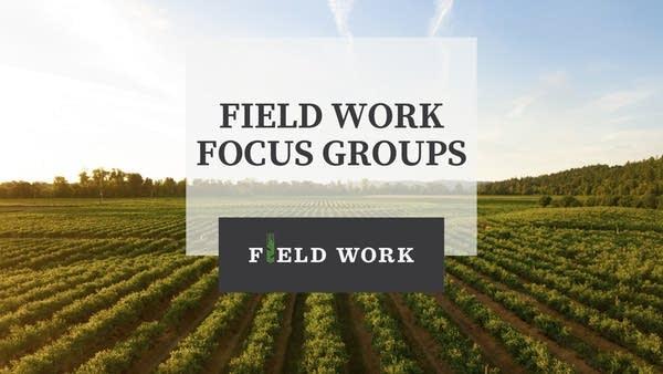 Field Work Focus Groups