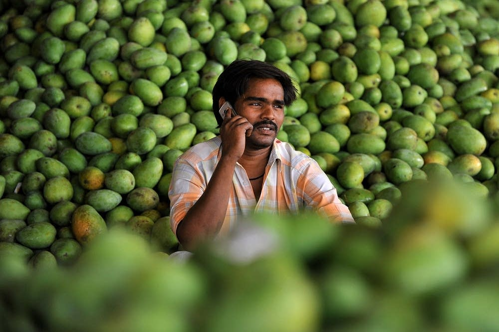 An Indian farmer on a cellphone