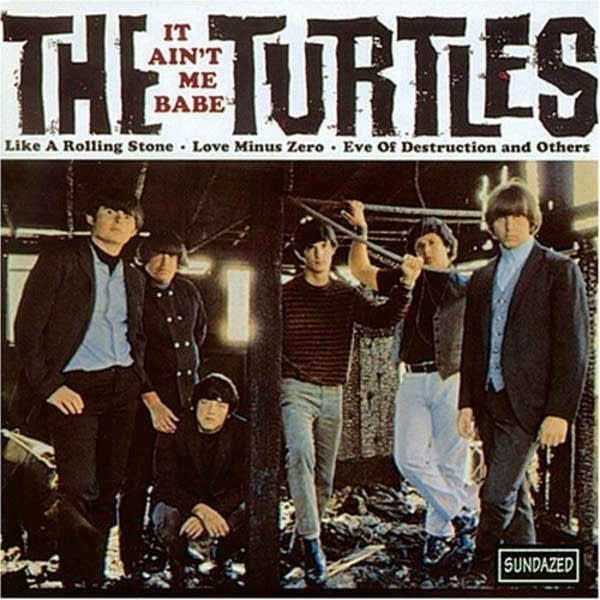 The Turtles -