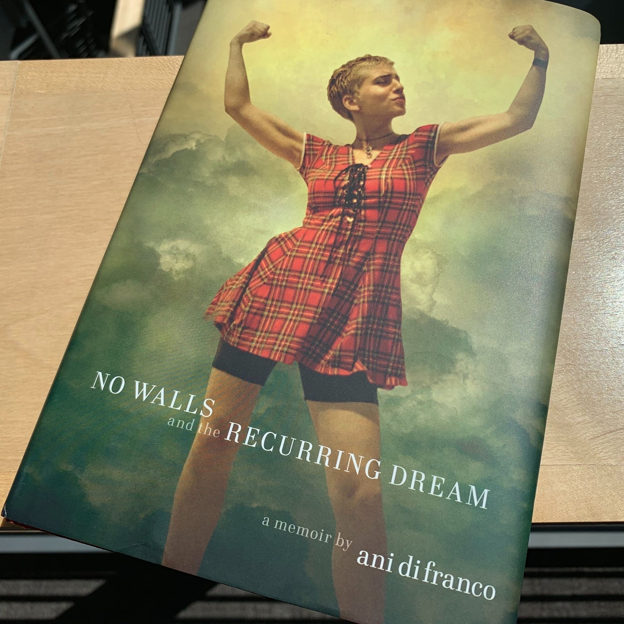 Ani DiFranco's 'No Walls and the Recurring Dream.'