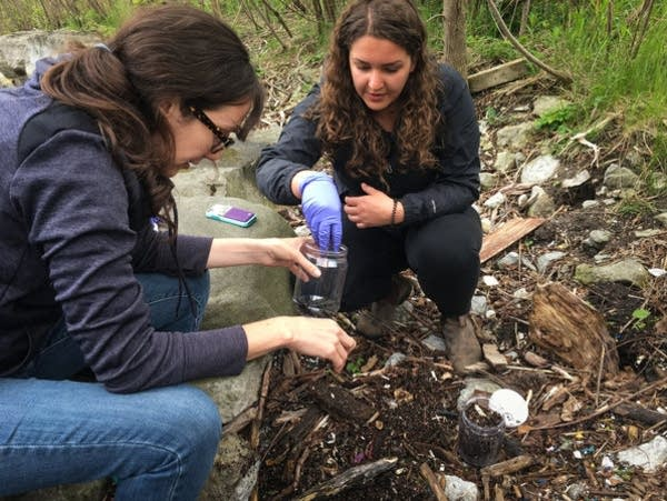Researchers dig through washed-up debris.