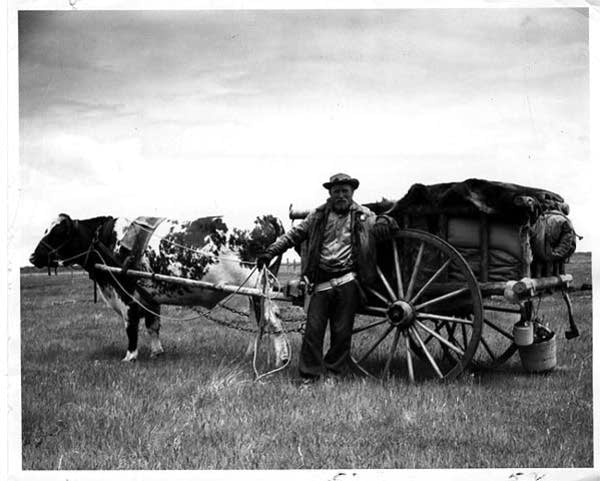 1958 oxcart trip