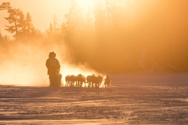 Gunflint Mail Run sled dog race