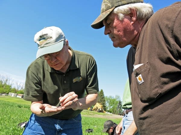 Doug Toussaint examined an earthworm.