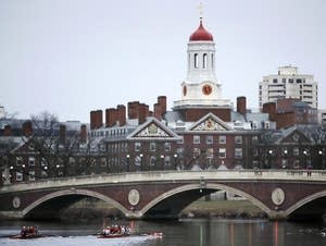 Rowers paddle along the Charles River past the Harvard campus.