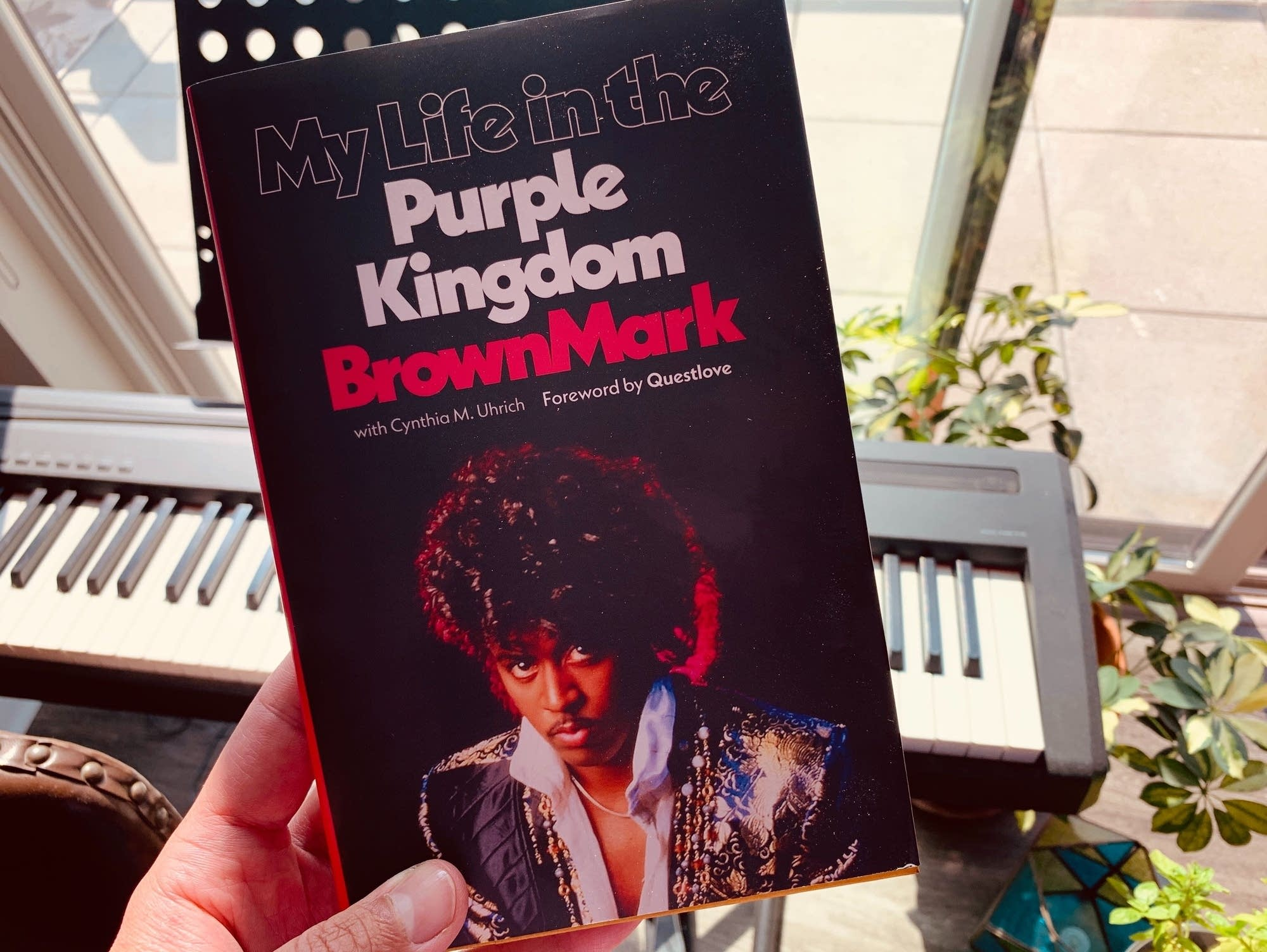 BrownMark's 'My Life in the Purple Kingdom.'