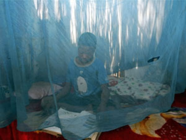 boy in mosquito net