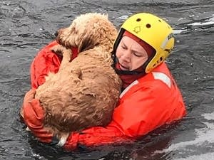 A Bloomington firefighter rescues a dog.
