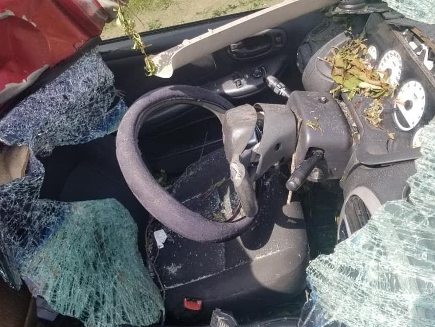 Amaya Nelsons Dodge Neon was crushed when she hit a bull moose