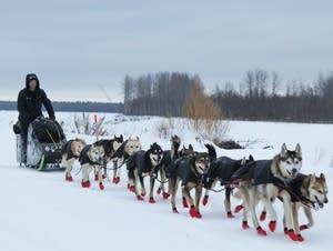Dallas Seavey leaves Koyukuk after taking a rest in the 2017 Iditarod