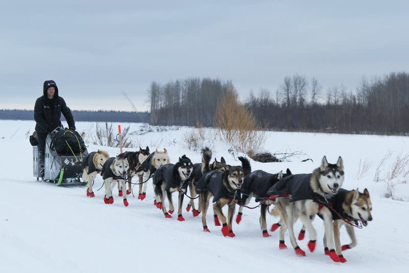 Dallas Seavey leaves Koyukuk after taking a rest in the 2017 Iditarod