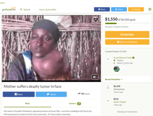 A screenshot of the now reinstated GoFundMe page.
