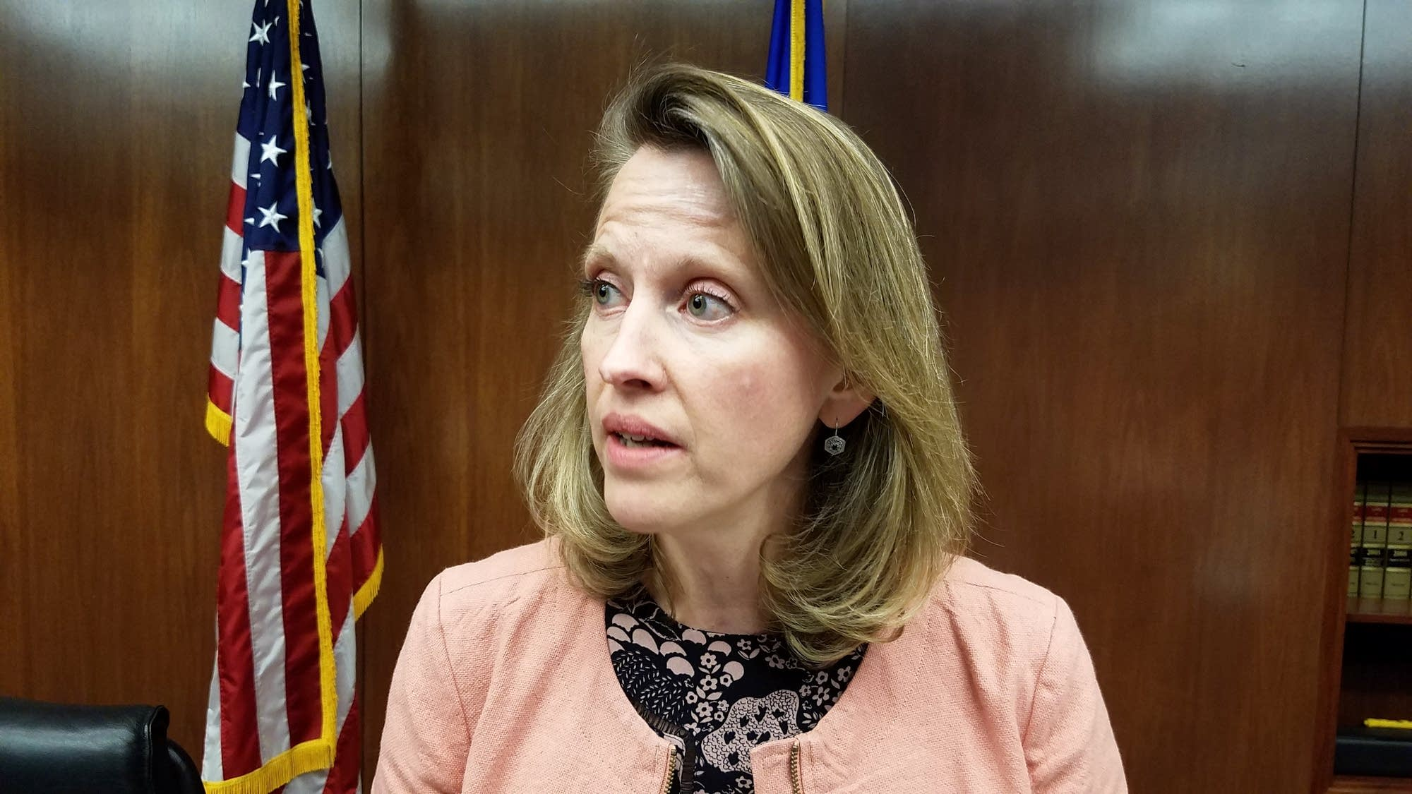 Rep. Sarah Anderson in St. Paul on Feb. 16, 2017.