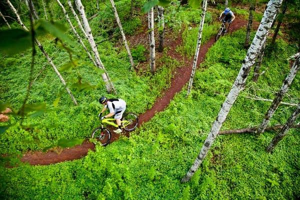 A mountain bike trail