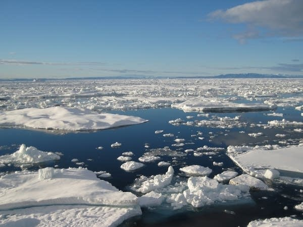 Arctic sea ice near Ellsmere Island in Canada.