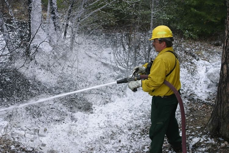 Firefighting with foam