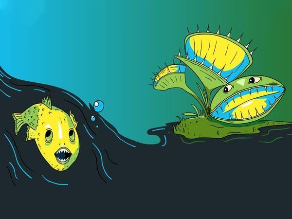 Smash Boom Best: Piranhas vs Venus Flytraps