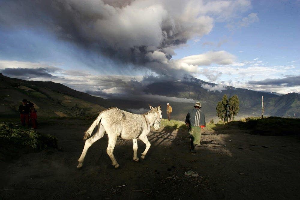 2008 eruption