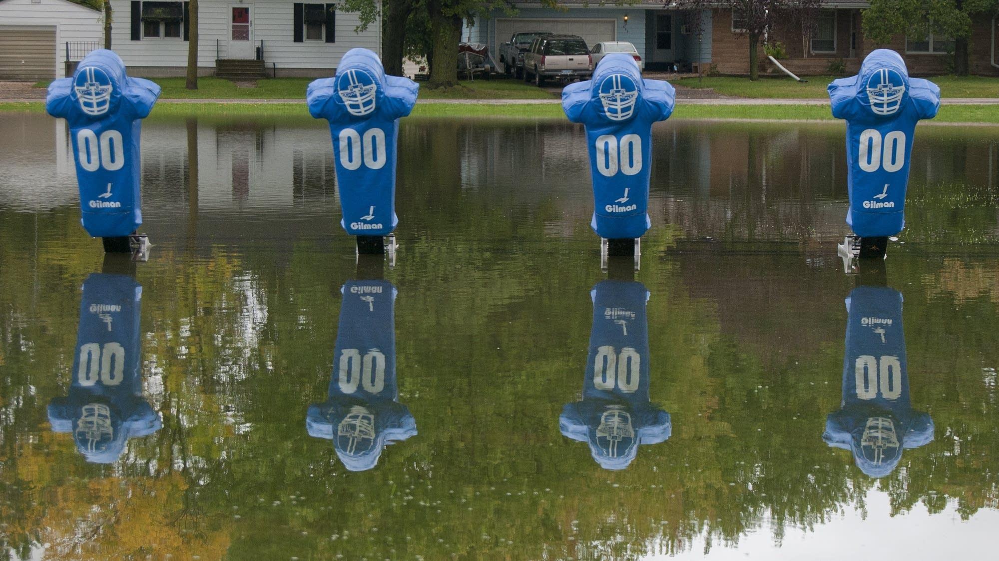 Football practice dummies sit in standing water.