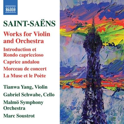 662b26 20171207 saint saens introduction et rondo