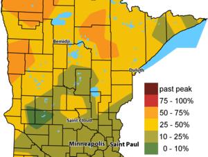 Minnesota State Park fall color Sept. 28