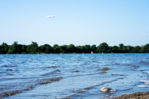 A plane descends toward over Lake Nokomis.
