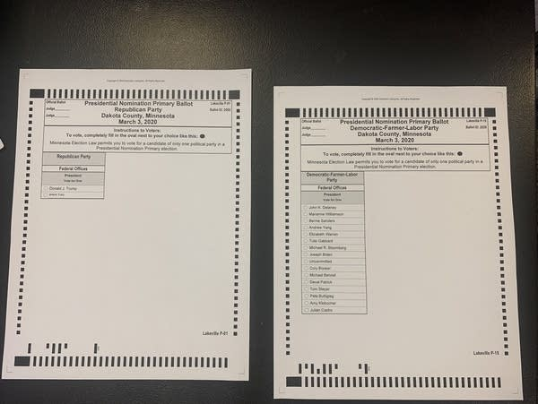Sample ballots show the choices for each party.