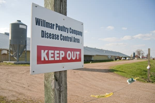 Willmar Poultry Company had two farms infected.