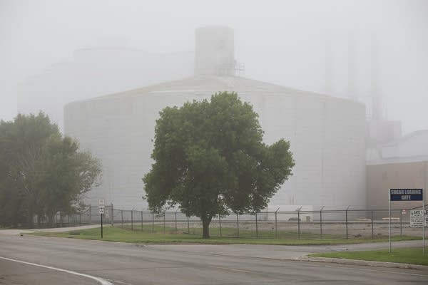 Foggy morning at the plant