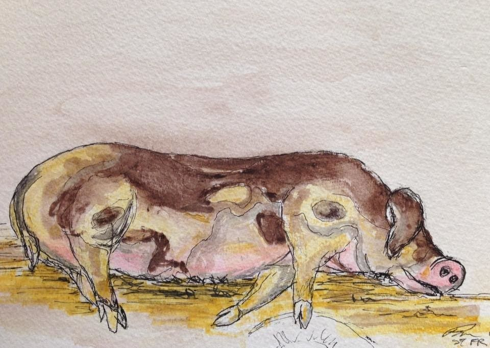 Sleeping animals make for stationary sketching subjects.
