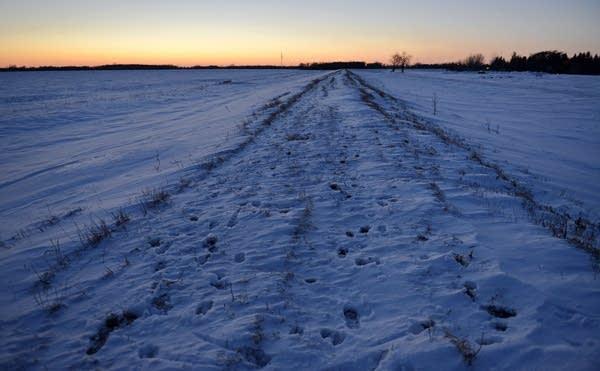 A dike on the U.S. - Canadian border near Noyes, Minn.