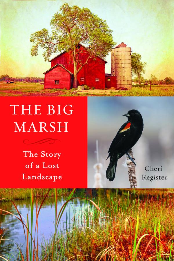 'The Big Marsh' by Cheri Register
