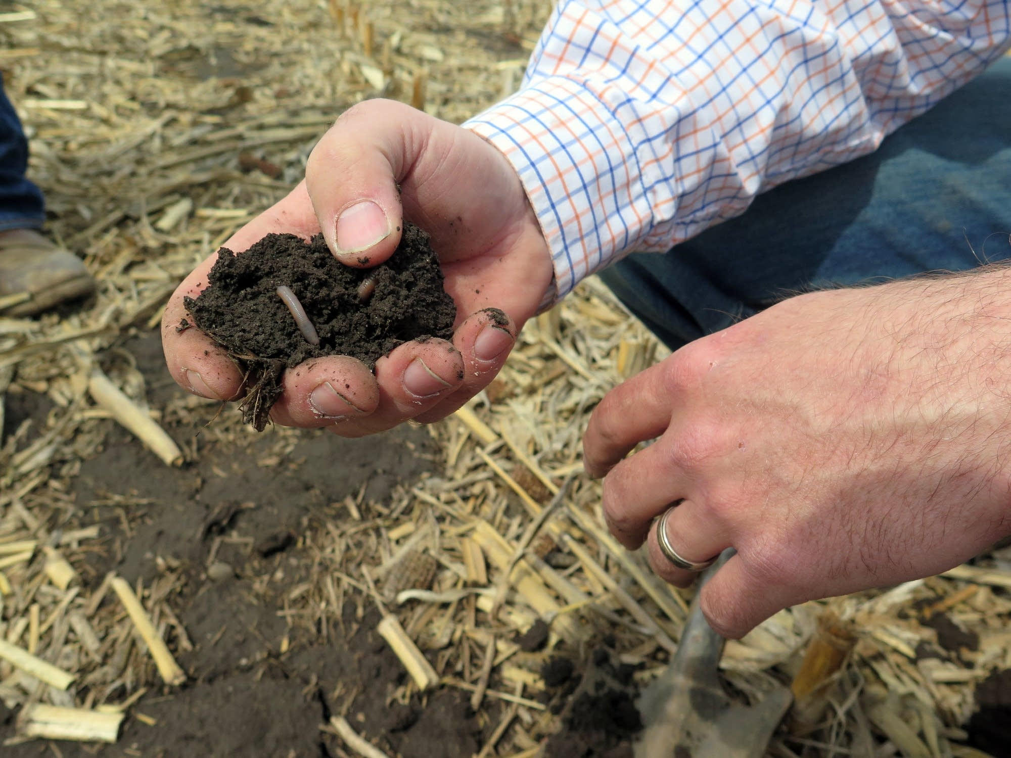 The soil on Brian Fruechte's farm is still too wet and cold to plant.