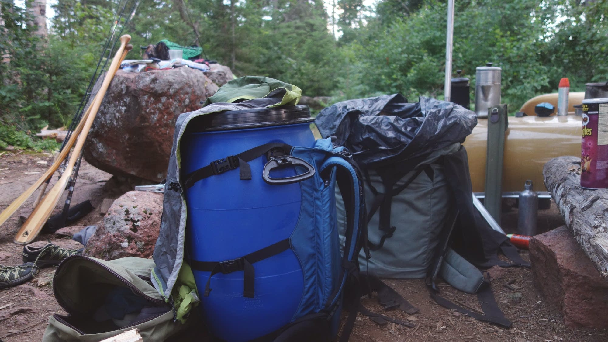 A bear-resistant container and portage pack