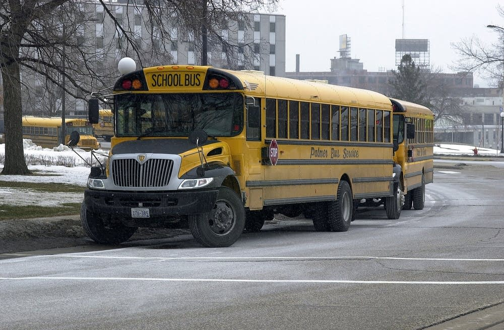 Auditor Concerned About Smaller School Transport Vehicles