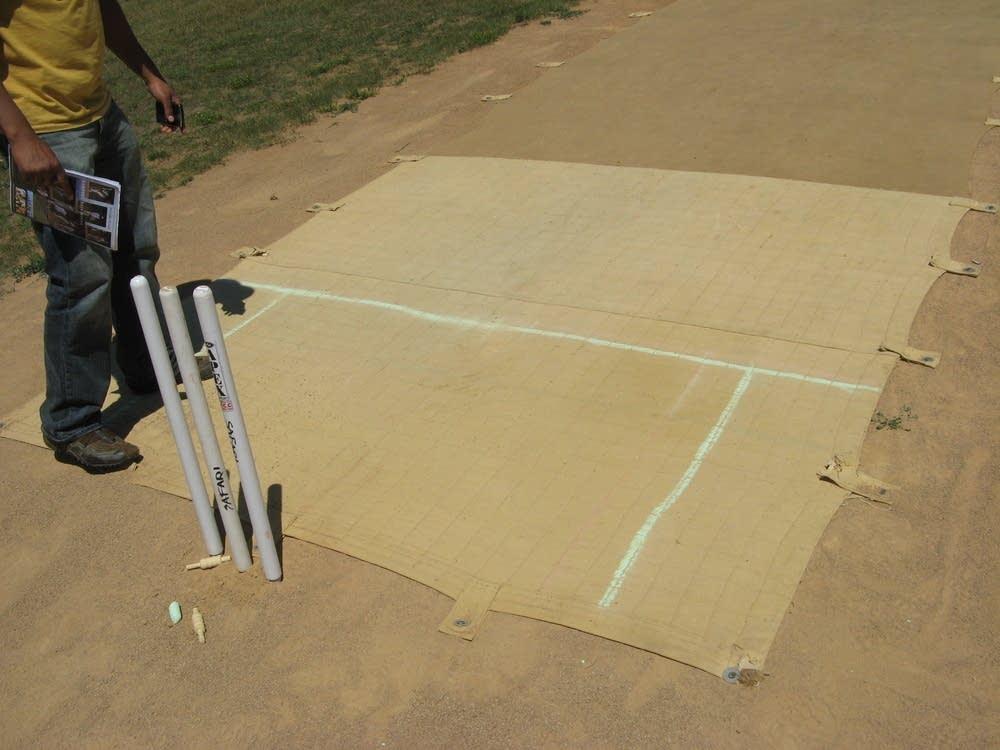 Cricket wicket
