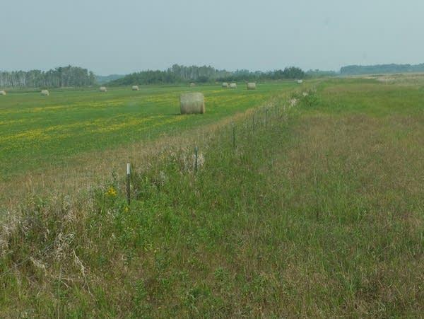 a fence in grassy fields