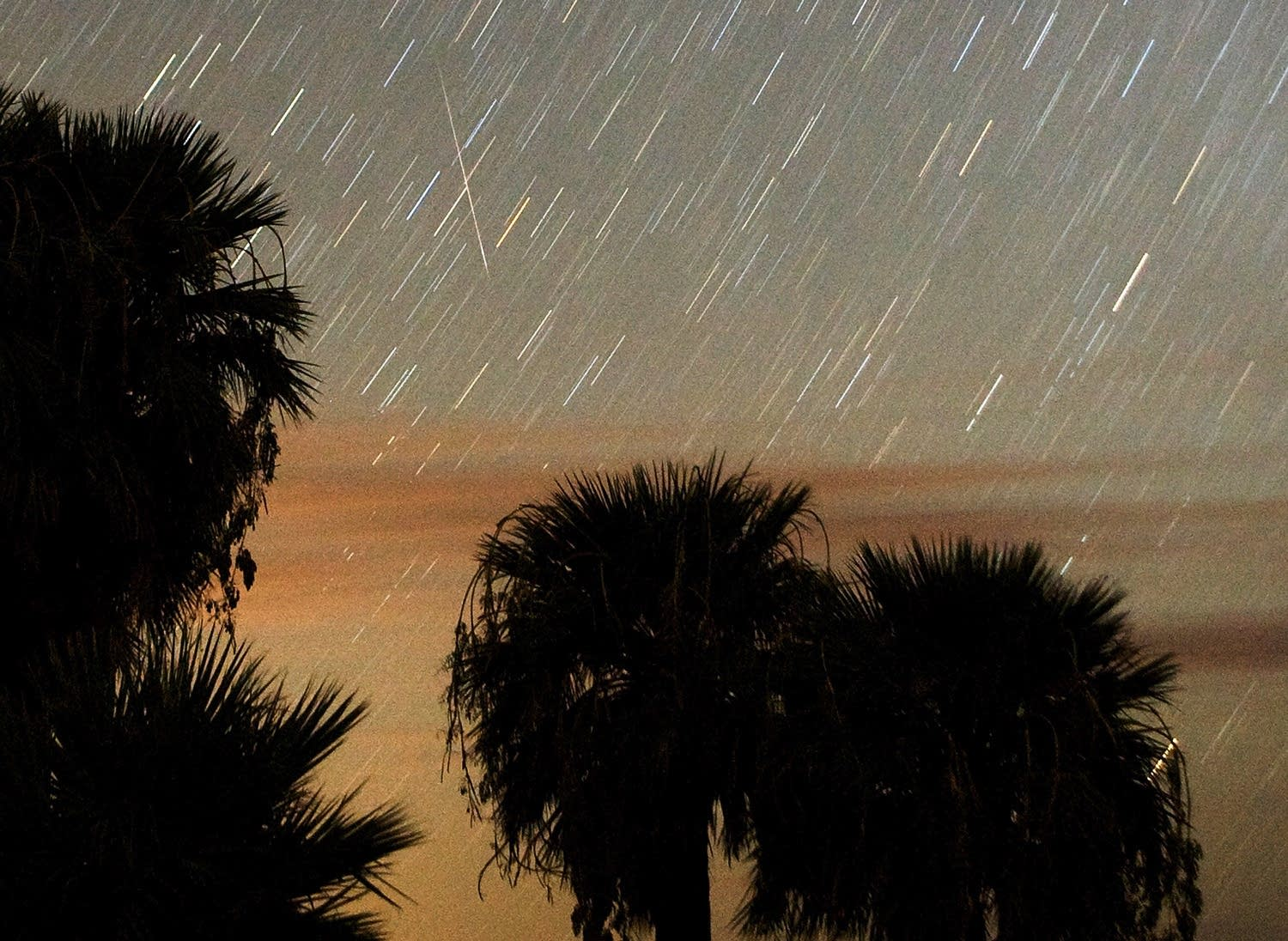 The Annual Perseid Meteor Shower Offers Celestial