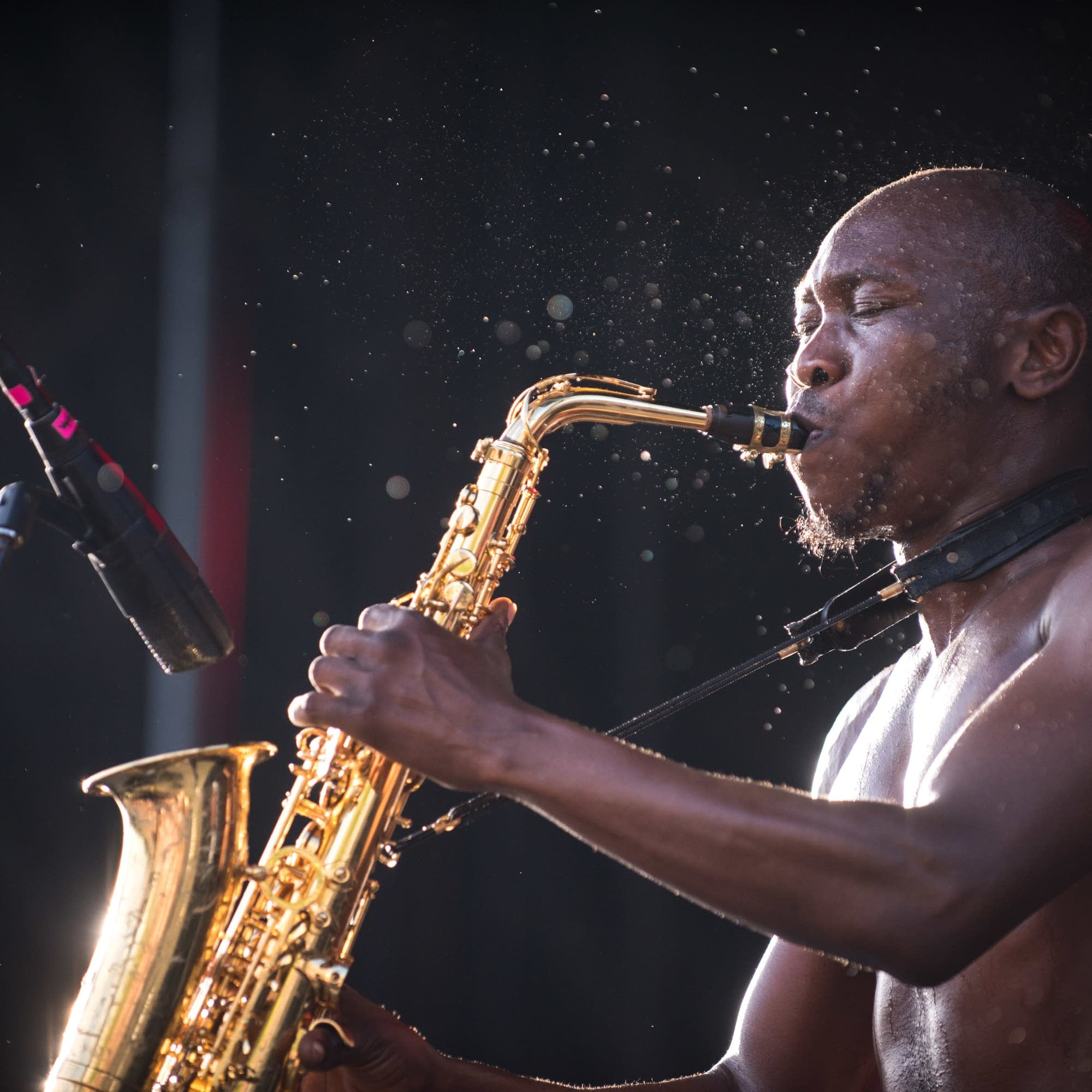 Seun Kuti and Egypt 80