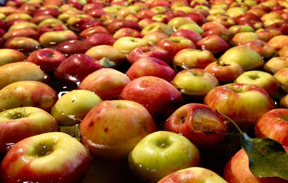 Apples are seen before sorting