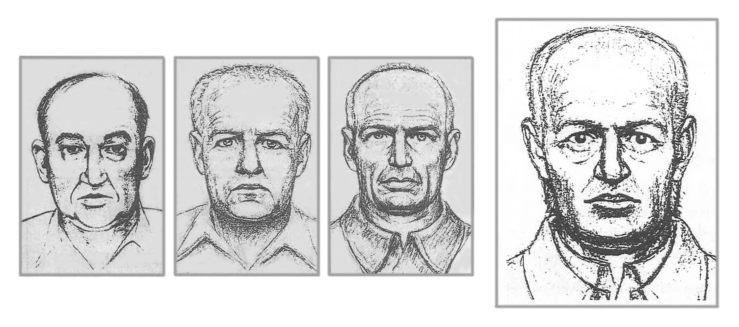 Wetterling composite sketch