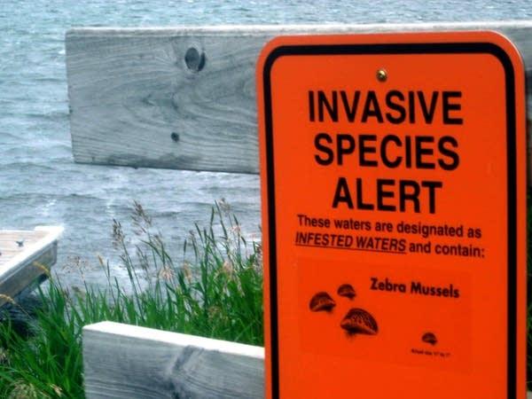 Invasive species alert