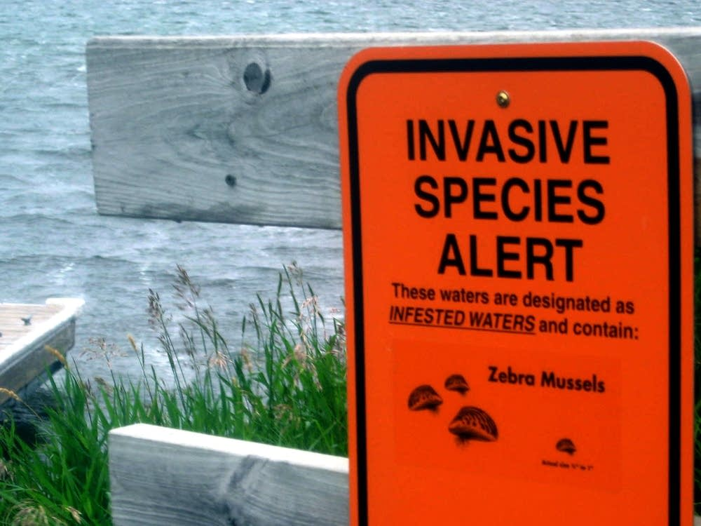 Invasive species alert